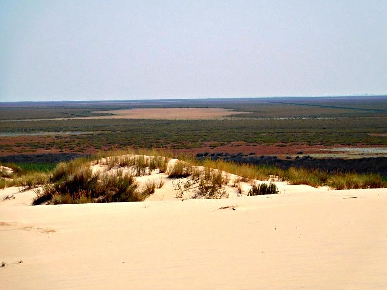 vista_deserto_donana